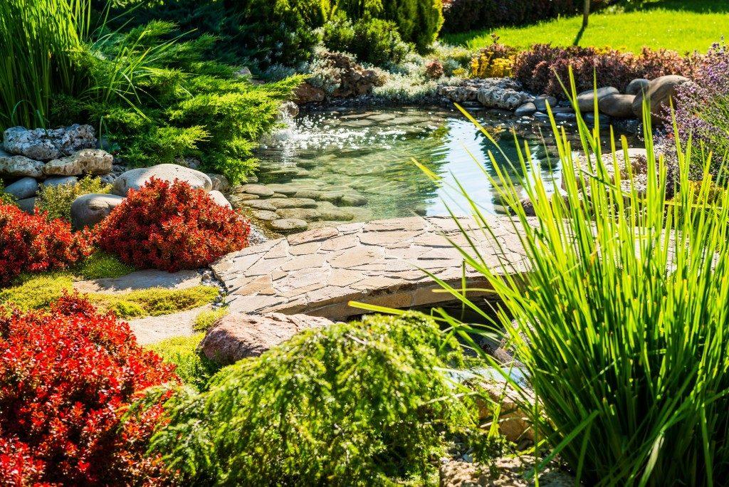 beautiful backyard with a pond